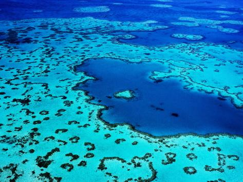 Aerial of Heart-Shaped Reef at Hardy Reef, Near Whitsunday Islands Photographic Print