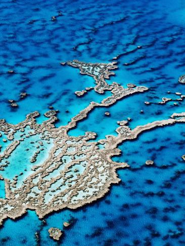 Hardy Reef, Near Whitsunday Islands, Great Barrier Reef, Queensland, Australia Photographic Print