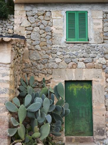Opuntia Cactus and Green Door Photographic Print
