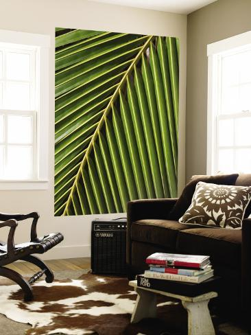Palm Frond, Westpunt Wall Mural