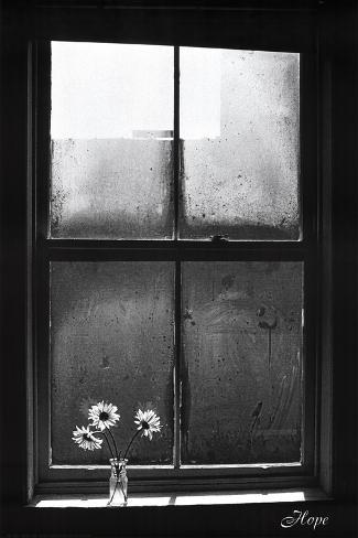 Hope (Window with Flowers) Poster