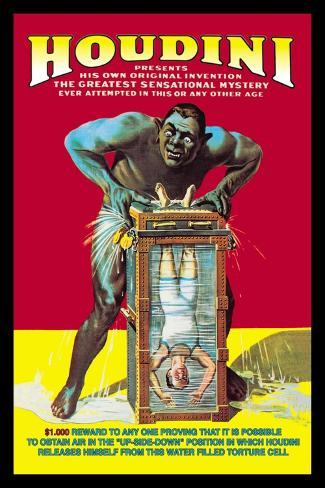 Houdini Wall Decal