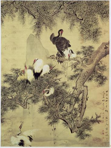 Eight Red-Crested Herons in a Pine Tree, 1754 Giclee Print