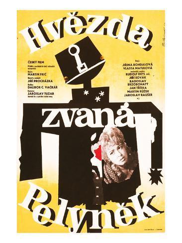 Hvezda Pelynek Art Print