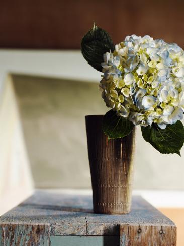 Hydrangea Rustic Vase Photo Allposters