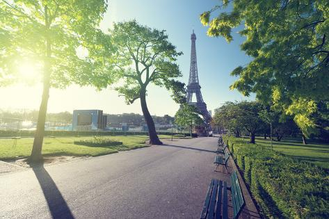 Sunny Morning and Eiffel Tower, Paris, France Photographic Print