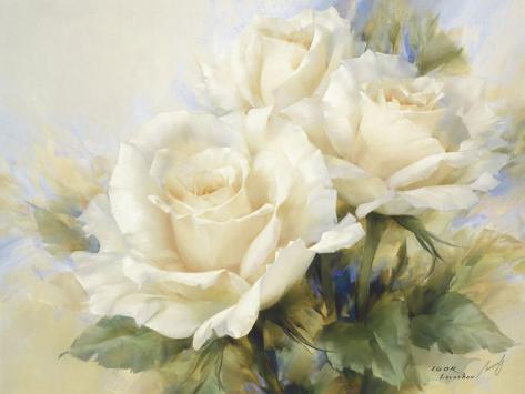 Bouquet di rose bianche Stampa artistica
