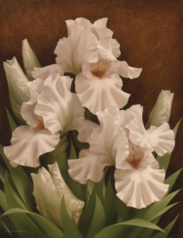 Iris Illumination I Art Print