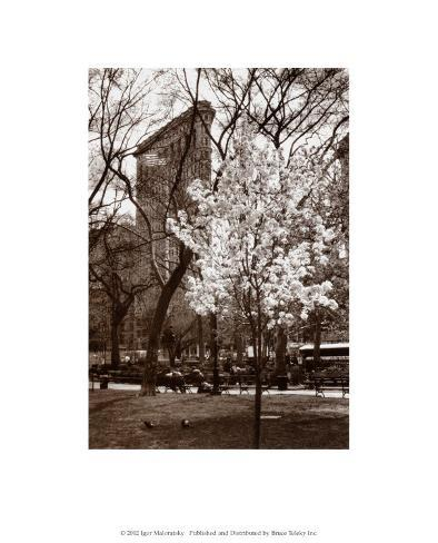 Flatiron Building, Spring Art Print