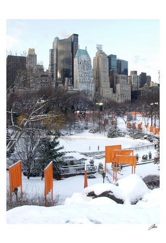 The Gates and Wollman Rink, Central Park Art Print