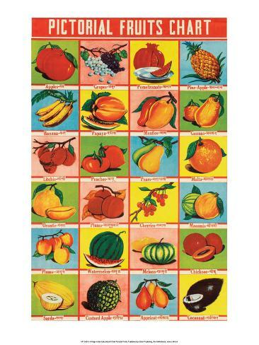 Indian Educational Chart - Pictorial Fruits Stampa artistica