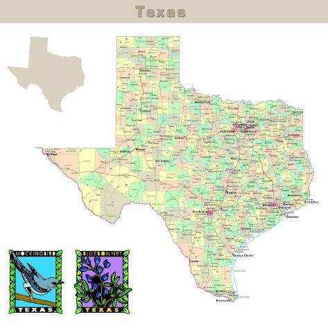 Usa States Series: Texas Art Print