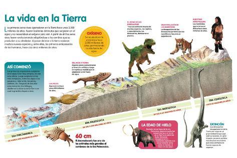 Resultado de imagen de La evolución de la vida en la Tierra