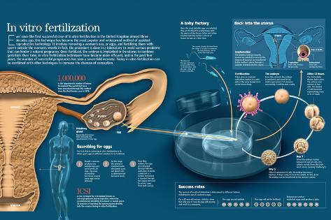 in vitro fertilization the most demanding and least successful procedure in reproductive medicine Learn more from webmd about in vitro fertilization before and the day of the procedure most women are given pain of reproductive medicine.