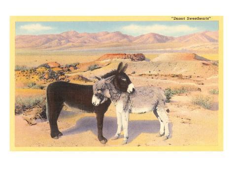 'Innamorati nel deserto', Asini si scambiano effusioni Stampa artistica