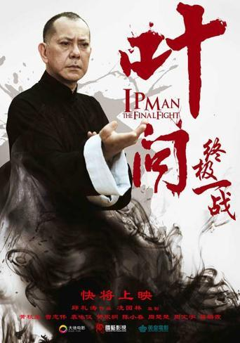 IP Man: The Final Fight Pôster