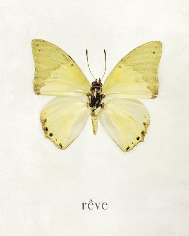Impressed Reve Giclee Print