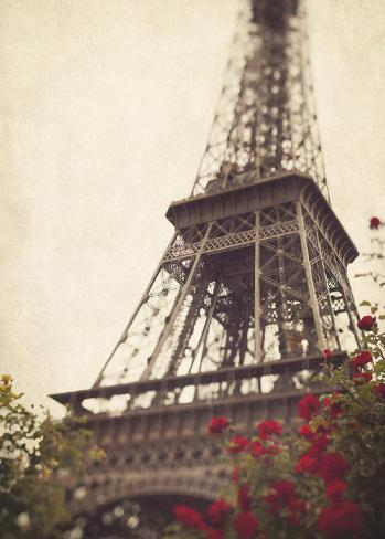 Paris Roses Art Print