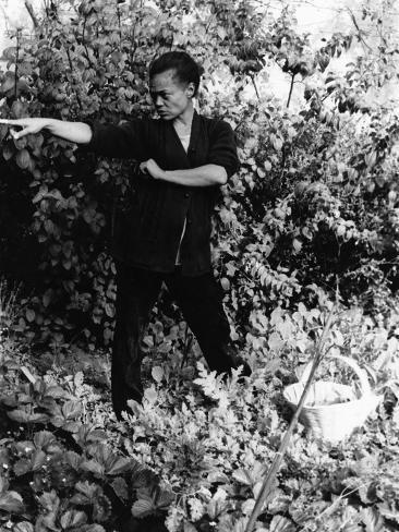 Eartha Kitt - 1959 Photographic Print