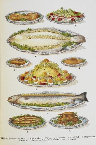 Assorted Fish Dishes Including Salmon, Trout, Cod and Scallops Giclée-vedos