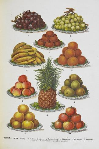 Assorted Fruits Including Pineapple Giclée-vedos