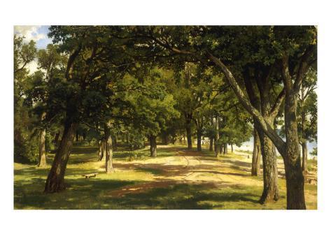 Wood Glade, 1889 Giclee Print
