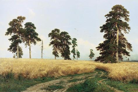 Rye Field, 1878 Giclee Print