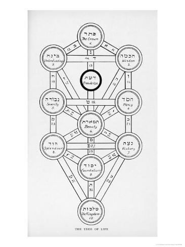 The Tree Of Life Of The Jewish Caballa Giclee Print By J F
