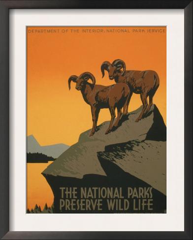 National Parks Framed Art Print