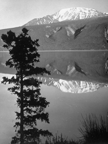 Lake Kluane with Snow-Capped Mountains Reflected in Lake Photographic Print