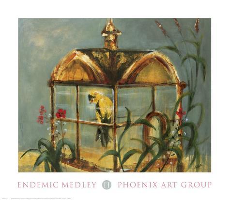 Endemic Medley II Art Print