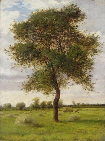 Study of an Ash Tree in Summer, 1883 Giclee Print