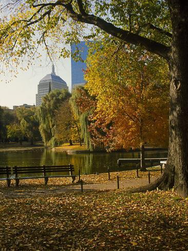 Public Gardens in the Fall, Boston, MA Photographic Print