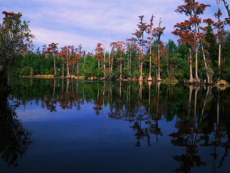 Billy's Lake Valokuvavedos