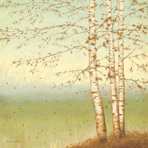 Golden Birch II with Blue Sky Art Print