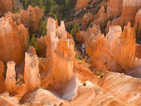 Hoodoos in Bryce Canyon from Inspiration Point, Bryce Canyon National Park, Utah, USA Photographic Print