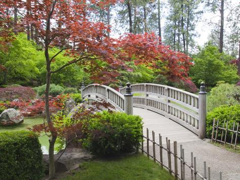 Nishinomiya Japanese Garden, Manito Park, Spokane, Washington, Usa Photographic Print