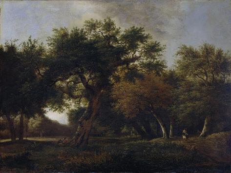 View of a Forest Print by Jan van Kessel - AllPosters.co.uk