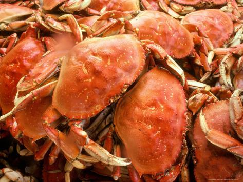 Fresh Crab in Pike Street Market, Seattle, Washington, USA Photographic Print