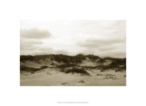Ocracoke Dune Study III Limited Edition