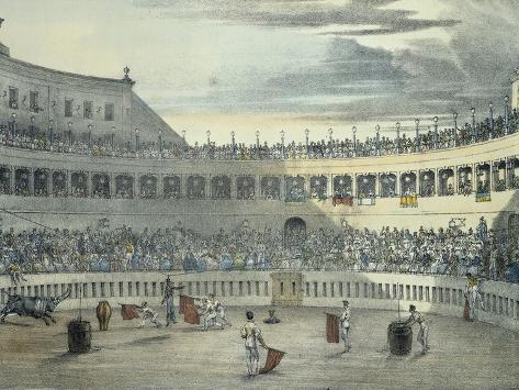 Bullfight in Rome Giclee Print