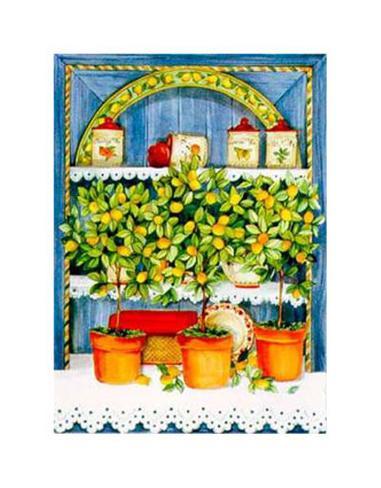 Blossoming Kitchen IV Art Print