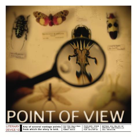 Literary Devices: Point of View Art Print