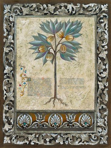 Fresco Botanica III Giclee Print