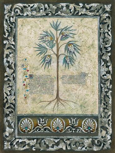 Fresco Botanica IV Giclee Print