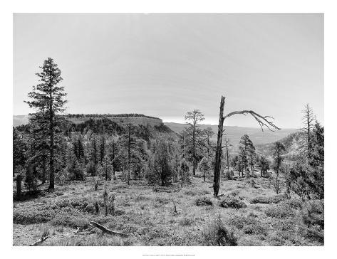 Canyon Lands V Art Print