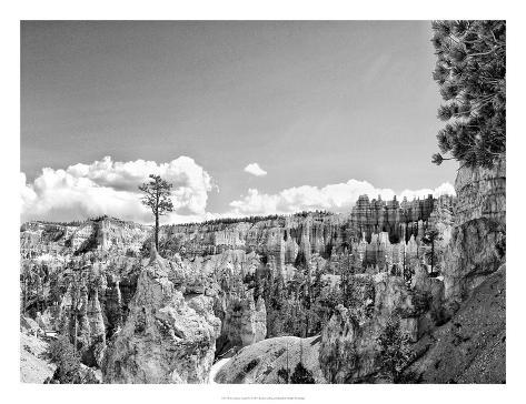Canyon Lands VI Art Print