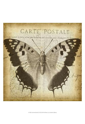 carte postale butterfly ii prints by jennifer goldberger at. Black Bedroom Furniture Sets. Home Design Ideas