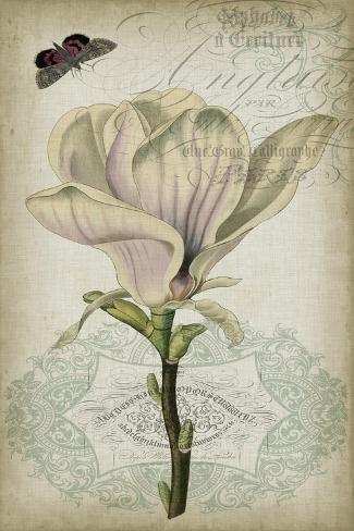 Cartouche & Floral I Art Print