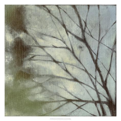 Diffuse Branches I Premium Giclee Print
